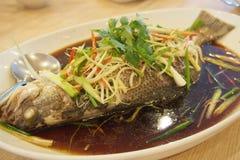 Βρασμένα στον ατμό ψάρια με τη σάλτσα σόγιας στοκ φωτογραφία με δικαίωμα ελεύθερης χρήσης