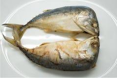 Βρασμένα στον ατμό ψάρια σκουμπριών Στοκ Εικόνες