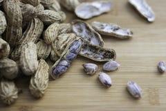 βρασμένα φυστίκια Στοκ Εικόνα