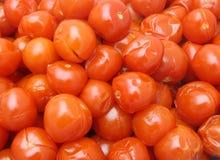 βρασμένες κόκκινες ντομάτ Στοκ φωτογραφία με δικαίωμα ελεύθερης χρήσης