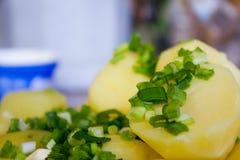 Βρασμένες πατάτες με το βούτυρο και τα χορτάρια Στοκ φωτογραφία με δικαίωμα ελεύθερης χρήσης