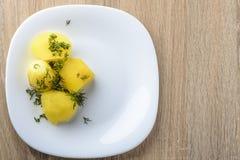 βρασμένες πατάτες Στοκ εικόνα με δικαίωμα ελεύθερης χρήσης