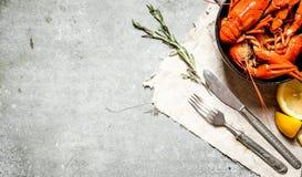 Βρασμένοι αστακοί με τους κλάδους λεμονιών και δεντρολιβάνου Στοκ φωτογραφία με δικαίωμα ελεύθερης χρήσης