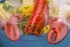 Βρασμένοι στον ατμό αστακός και λαχανικά που μαγειρεύουν πέρα από μια σχάρα σχαρών Στοκ φωτογραφία με δικαίωμα ελεύθερης χρήσης