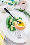 Βρασμένο αυγό για το πρόγευμα Στοκ Εικόνα