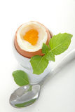 βρασμένο αυγό μαλακό Στοκ φωτογραφίες με δικαίωμα ελεύθερης χρήσης
