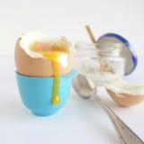 βρασμένο αυγό μαλακό Στοκ εικόνες με δικαίωμα ελεύθερης χρήσης