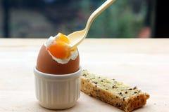 βρασμένο αυγό Στοκ φωτογραφία με δικαίωμα ελεύθερης χρήσης