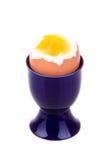 βρασμένο εύγευστο αυγό Στοκ φωτογραφίες με δικαίωμα ελεύθερης χρήσης