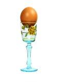 Βρασμένο καφετί αυγό στον κάτοχο αυγών Στοκ Φωτογραφίες