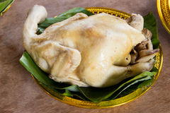 Βρασμένο κοτόπουλο. Υποβάλτε τα σέβη στο Θεό Στοκ Εικόνες