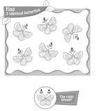 Βρείτε Μαύρο 2 τον ίδιο πεταλούδων διανυσματική απεικόνιση