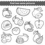 Βρείτε δύο ίδιες εικόνες καρποί που τίθενται διαν&ups απεικόνιση αποθεμάτων