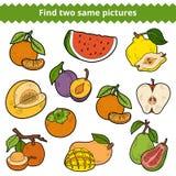 Βρείτε δύο ίδιες εικόνες καρποί που τίθενται διαν&ups ελεύθερη απεικόνιση δικαιώματος