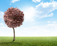 Βρετανική λίβρα δέντρων χρημάτων Στοκ Εικόνες