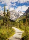 Βρετανική Κολομβία, ίχνος βουνών, Καναδάς, να πραγματοποιήσει οδοιπορικό Στοκ Εικόνα