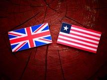 Βρετανική σημαία με τη λιβεριανή σημαία σε ένα κολόβωμα δέντρων που απομονώνεται Στοκ φωτογραφίες με δικαίωμα ελεύθερης χρήσης