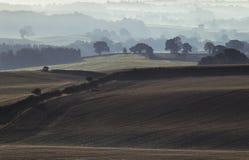 Βρετανικοί τομείς επαρχίας στην υδρονέφωση πρωινού στοκ εικόνα με δικαίωμα ελεύθερης χρήσης