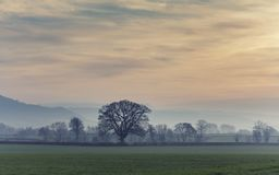 Βρετανικοί τομείς επαρχίας στο μουντό ηλιοβασίλεμα στοκ φωτογραφία