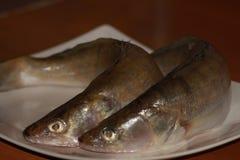 βρετανικός επιτραπέζιος παραδοσιακός ξύλινος πρόχειρων φαγητών ψαριών τσιπ Στοκ Εικόνες