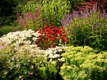 Βρετανικός κήπος την άνοιξη Στοκ Φωτογραφίες
