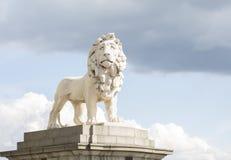 βρετανικό λιοντάρι Στοκ Φωτογραφίες