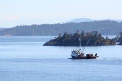 βρετανικό seiner νησιών κόλπων α&lamb Στοκ Εικόνα
