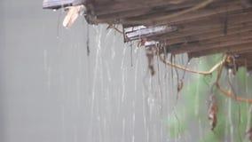 Βροχή από τη στέγη του σπιτιού απόθεμα βίντεο