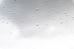 Βροχή και δροσιές Στοκ φωτογραφίες με δικαίωμα ελεύθερης χρήσης