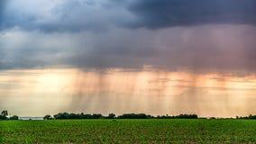 Βροχή πέρα από το πράσινο πανόραμα τομέων στο ηλιοβασίλεμα το καλοκαίρι στοκ φωτογραφίες με δικαίωμα ελεύθερης χρήσης