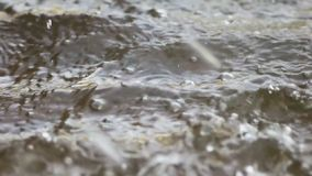 Βροχή που αφορά κάτω το νερό φιλμ μικρού μήκους
