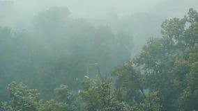 Βροχή που βλέπει δυνατή μέσω του παραθύρου  γκρίζος και ευμετάβλητος καιρός απόθεμα βίντεο