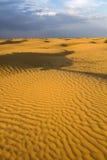 Βροχή στην έρημο Στοκ εικόνες με δικαίωμα ελεύθερης χρήσης