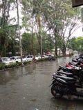 Βροχή στην πανεπιστημιούπολη στοκ εικόνες