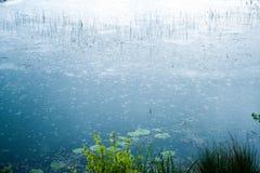 Βροχή στη λίμνη Στοκ εικόνες με δικαίωμα ελεύθερης χρήσης