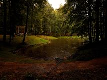 Βροχή στο πάρκο Στοκ φωτογραφία με δικαίωμα ελεύθερης χρήσης