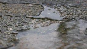 Βροχή στο πεζοδρόμιο απόθεμα βίντεο