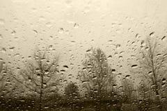 βροχή Στοκ Εικόνες