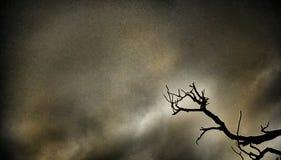 Βροχερά temp Στοκ φωτογραφία με δικαίωμα ελεύθερης χρήσης