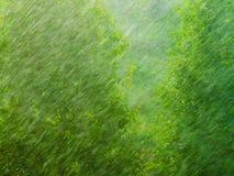 Βροχερή εξωτερική σύσταση υποβάθρου παραθύρων πράσινη Στοκ Φωτογραφίες