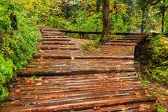 Βροχερή ημέρα και ξύλινη πορεία τουριστών σε Plitvice στοκ εικόνες