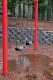 Βροχερή ημέρα στο πάρκο Στοκ Εικόνα