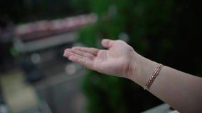 Βροχερός καιρός, πτώσεις βροχής που αφορά το χέρι της γυναίκας Η βροχή μειώνεται σε ετοιμότητα ανθρώπινο απόθεμα βίντεο