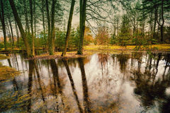 Βροχερός καιρός στο πάρκο στοκ εικόνες
