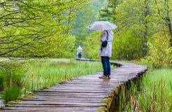 Βροχερός περίπατος ημέρας και τουριστών σε Plitvice στοκ φωτογραφία