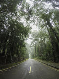 βροχερός δρόμος Στοκ εικόνες με δικαίωμα ελεύθερης χρήσης