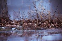 βροχερός στοκ φωτογραφία