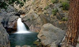 βρυχηθμός ποταμών πτώσεων στοκ εικόνα με δικαίωμα ελεύθερης χρήσης