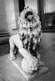 Βρυχηθμός του αγάλματος λιονταριών μπροστά από το παλαιό κτήριο σε γραπτό στοκ φωτογραφίες με δικαίωμα ελεύθερης χρήσης