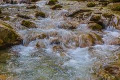 Βρυχηθμός του νερού του ρεύματος βουνών στοκ φωτογραφίες